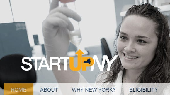The Start-Up NY homepage.