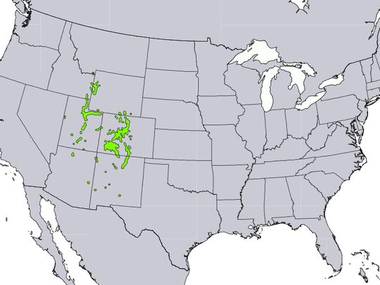 United States Department of Agriculture shows an  Atlas of US Trees, natural range for blue spruce.