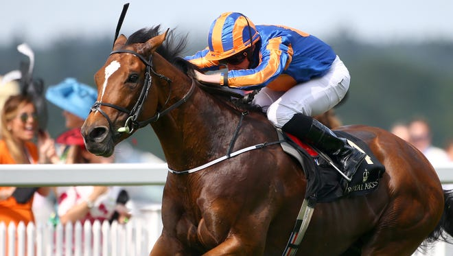 Gleneagles during Royal Ascot 2015 at Ascot racecourse on June 16, 2015 in Ascot, England.
