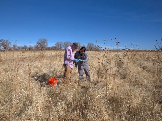 New Mexico State University principal investigator Kevin Lombard and researcher Brandon Francis look over a GPS coordinate before taking a soil sample on Monday, Feb. 5, 2018 at a farm in Hogback.