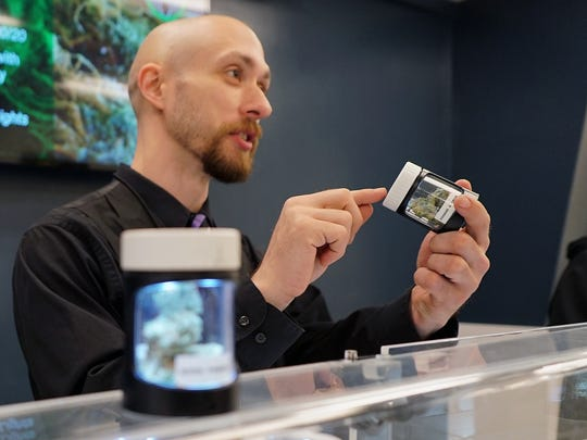 A clerk at the Cannabaska marijuana store in Anchorage discusses the particulars of a strain of cannabis with a customer. The store's owner recruited workers from Colorado, which has a more established marijuana industry.
