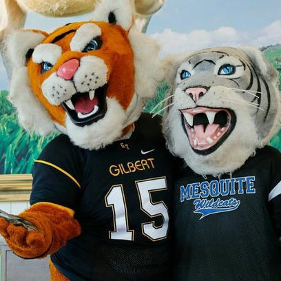 The Gilbert and Mesquite high-school mascots are friendly