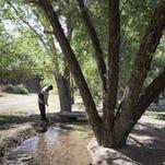 Revitalizing the Santa Cruz River