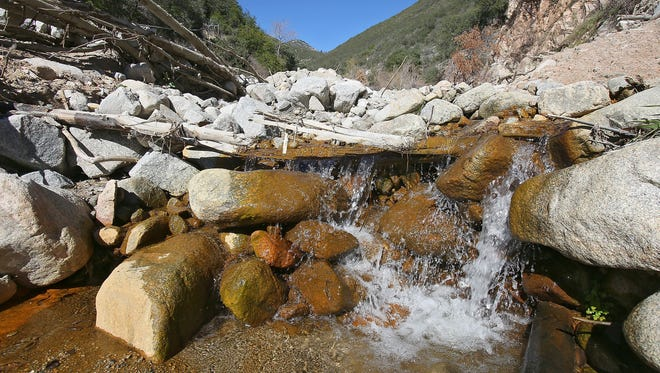 Even with California deep in drought, the U.S. Forest Service hasn't assessed the effects of the bottled water business on springs and streams, such as Strawberry Creek in the mountains north of San Bernadino where Nestle Waters wells tap into the spring to sell bottled water.