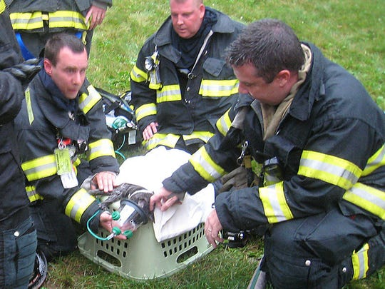 In this file photo, members of the Madison Fire Department rescue a cat that was trapped in a house fire.