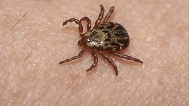 Health officials say a new virus has been detected following the death of a southeast Kansas resident this summer and they believe it is carried by ticks or other insects.
