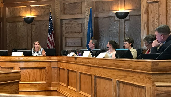 Sen. Deb Peters, R-Hartford, speaks to the Government Operations and Audit Committee Tuesday in Sioux Falls.