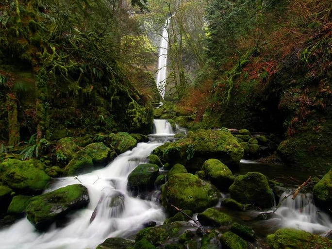 Best easy hikes in the Columbia River Gorge. No. 4 —Elowah Falls.