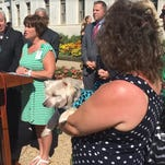 BLOG: Dogs helping kids in Pa. courtrooms