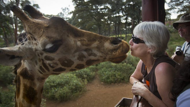 A giraffe eats a food pellet from the mouth of a foreign visitor at the Giraffe Center, in the Karen neighborhood of Nairobi, Kenya, on Sept. 30, 2013.