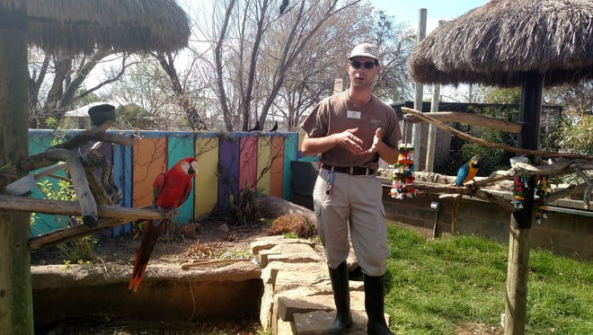 Blaine Peluso-Miller, a keeper at the Abilene Zoo, gives a talk to spring break patrons about the colorful macaws kept at the popular destination. Keeper talks like Blaines will be featured throughout the week for interested parties looking to learn about the animals from birds to beasts.
