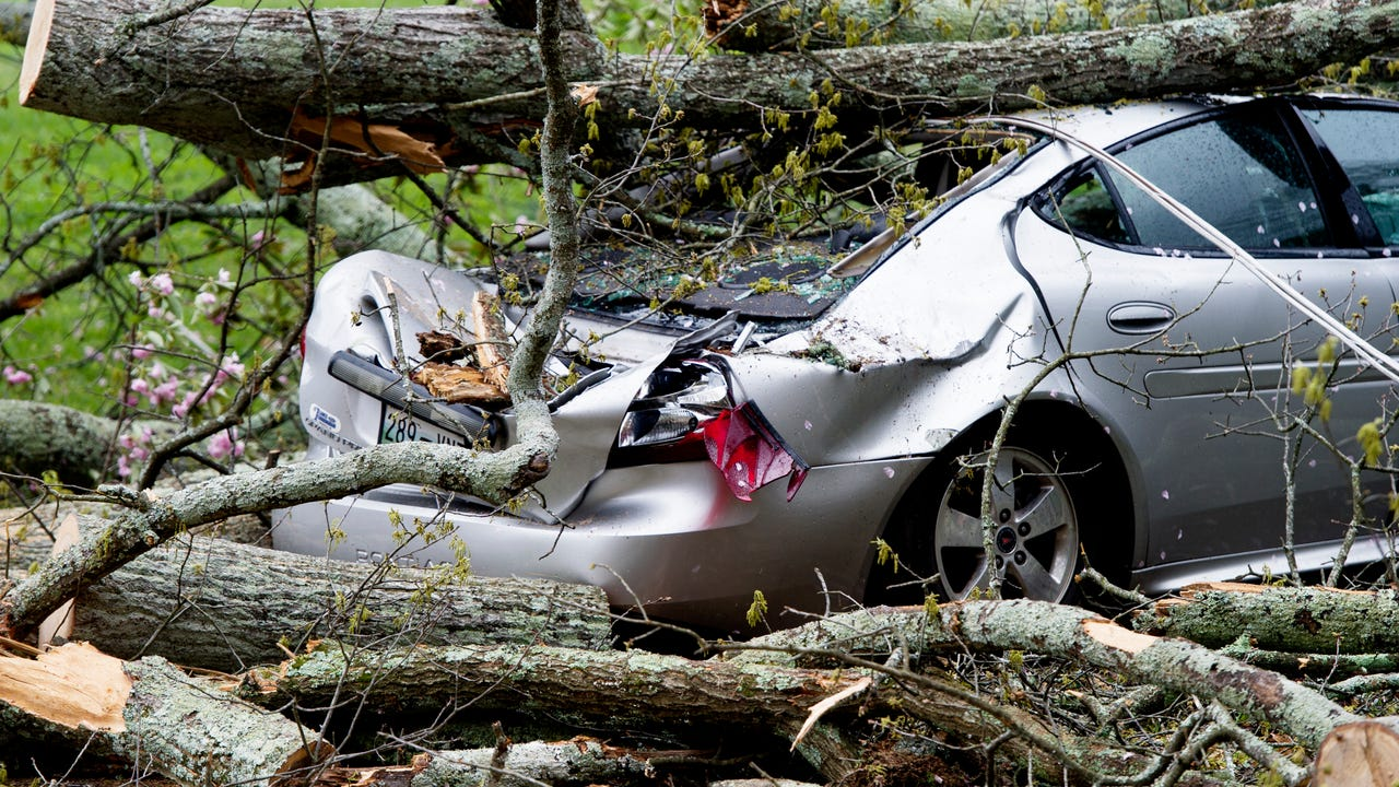 VIDEO: Downed tree crushes Pontiac