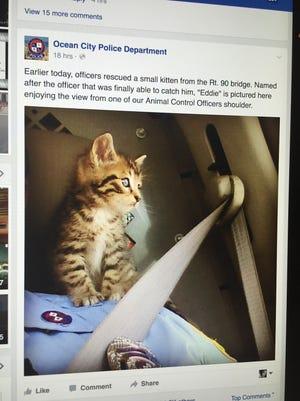 Ocean City police cat rescue