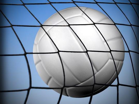 -Presto graphic Volleyball.JPG_20140430.jpg