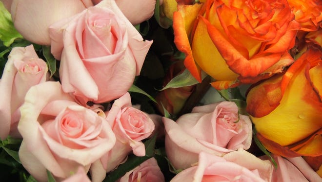 Roses from Woods Floral & Gifts