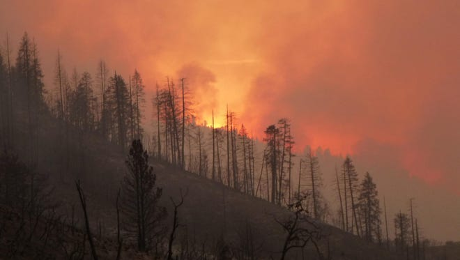 Wildfire season is expected to be below normal this summer.