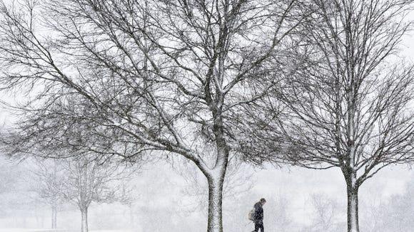 winter storm niko
