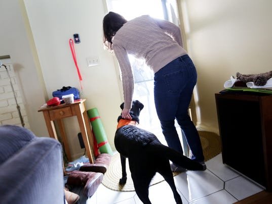 how does a guide dog help a blind person