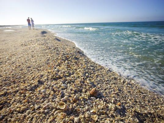 636077392119966998-USA-Today-shells-Sanibel-2-credit-to-The-Beaches-of-Fort-Myers-Sanibel.jpg