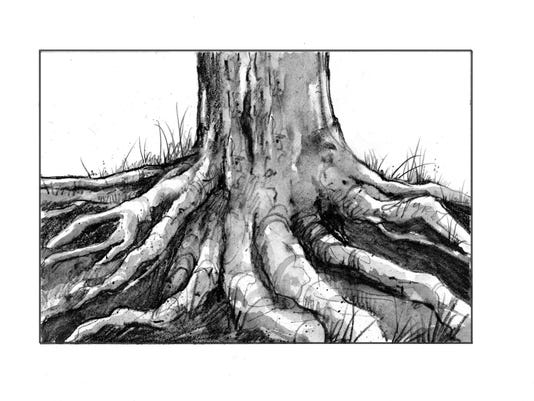 TOS_Tree_Roots