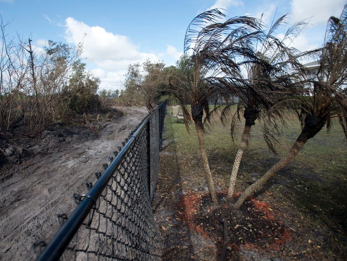 """""""Our whole preserve is gone. We used to sit out here"""