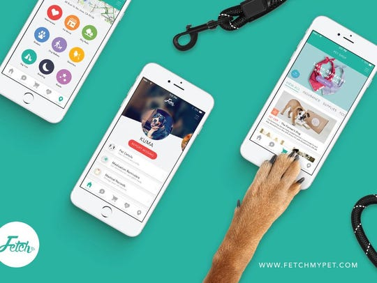 The Fetch My Pet app offers a personalized hub for