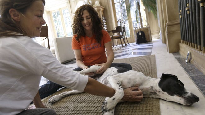 Shelah Barr of Happy Hounds Massage, center, gives a massage to Dewie, 2, at the home of Laurie Ubben, left, in San Francisco.