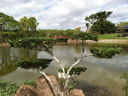 The Morikami Museum and Japanese Gardens in Delray Beach offers a variety of Asian-inspired features on a trail around the water, including a rock garden, picturesque bridge, bonsai collection and waterfalls. It is the only museum in the country dedicated to Japanese arts and culture.