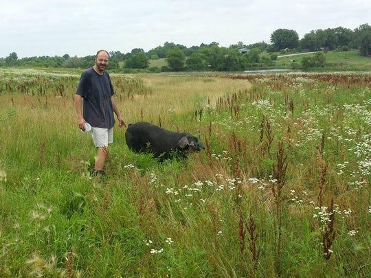 Jason Johnson with a Large Black pig on Lucky George Farm.