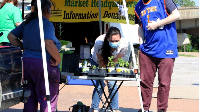 Matha Stilley, left, helps Christien Moore and Natalie McElrey pick out some starter plants of mint and sage to take home,Tuesday, June 16, 2020, at the Tuesday Fort Smith Farmers Market on Garrison Avenue. The farmers market at the corner of Garrison and 2nd Street is open Tuesday and Saturday, 7 a.m. - noon.