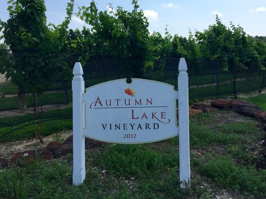 Autumn Lake Vineyard in Williamstown is one of South