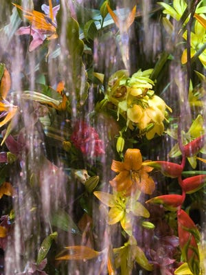 Water falls past tropical flowers on the archway at a past Philadelphia Flower Show. This year, water will be the focus of the much-anticipated event.