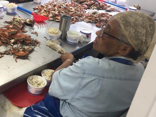 Marian Sample works at Nandua Seafood LLC in Hacks