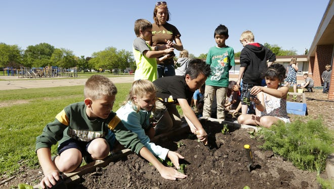 Emmeline Cook Elementary School students Liam Jepsen, Alexis Dombrowski and Ayden Lor tend to their plants, which they grew from seeds in 4-by-8-foot beds. Growing Oshkosh promotes healthy food sources at 11 schools in Oshkosh.