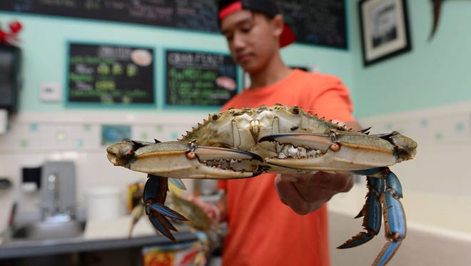 Patrick Mochiam, holds a fresh jumbo crab at South Bethany Seafood on Thursday, August 17, 2017.