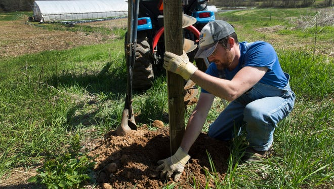 Chris Holman sets a fence post. Holman, a farmer from Custer, worries about the harsh business cycles in agriculture that force out small farms.