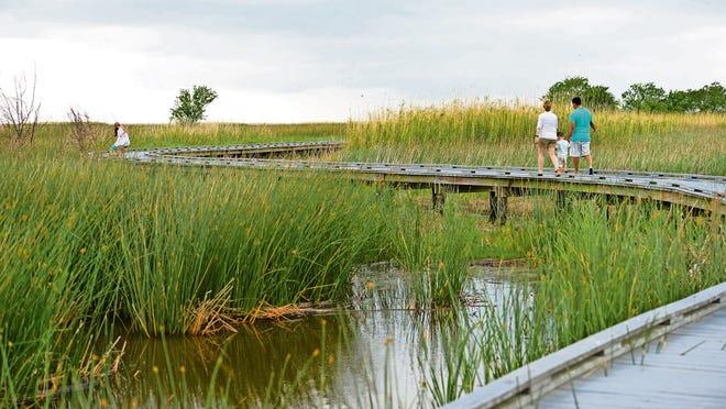 The Sabine National Wildlife Refuge Wetland Walkway.