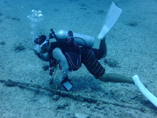 Diver looks at undersea cable