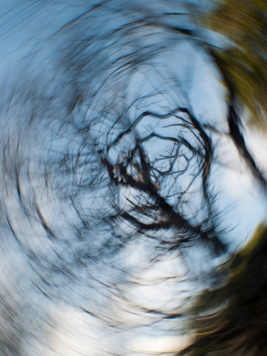 Concept of vertigo with spiral image of a tree
