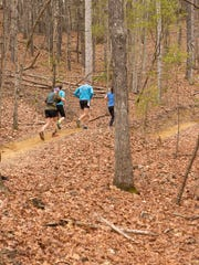 Runners take part in the Yeti or Not 25K Trail Race in February in DuPont State Forest. The race is sponsored by Run282 Foundation, which has just launched the N.C. Mountain Trail Runners Club to organize trail runners for group runs and trail maintenance work.