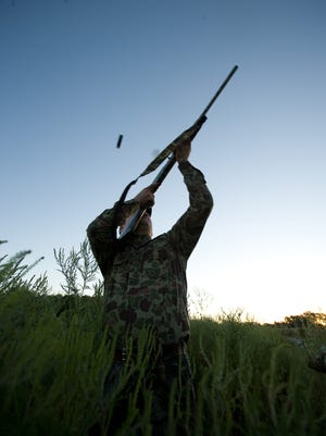 Dove hunters may have new options and fewer regulations during the 2018-2019 Florida hunting season.