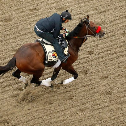 Nyquist goes for his final gallop ahead of the Preakness