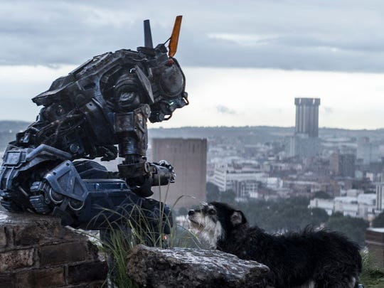 """The underrated """"Chappie"""" starts streaming April 9 on Hulu."""