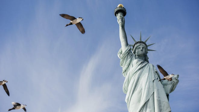Birds fly past the Statue of Liberty, on Liberty Island in New York.