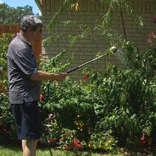 Kenneth Gordon  and his wife were happy to learn that strict watering guidelines are being eased just a bit.