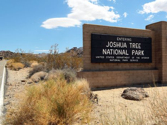Several trails have been closed in Joshua Tree National