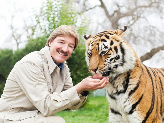 Tigers on stage at Diana Wortham Theatre? Maybe. When