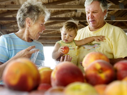 Track it for yourself: Do you meet the daily requirements for fruit and vegetables? FILE PHOTO