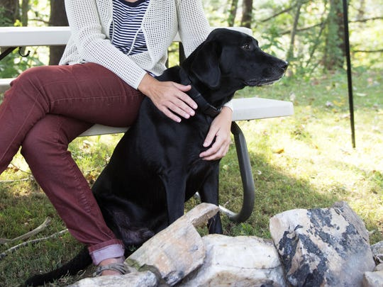 Clyde resident Chelle Baker, widow of Wade Baker, the Army veteran who died in a Haywood County church, holds onto Honor, Wade's service dog, during an interview at the family home. Chelle Baker asked not to be identified via photo to help with privacy for her and her children.
