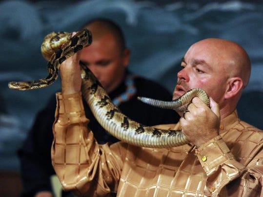 -snake-01.jpg_20140218.jpg